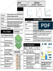 photosynthesis-knowledge-organiser