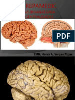 c01 Neuro Generalidades