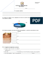 Articles-19390 Recurso PDF Fotosintesis Preguntas