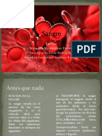 Sangre Fisiologia