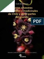guia-de-campo_plantas-silvestres-comestibles-y-medicinales-de-chile-y-otras-partes-del-mundo.pdf