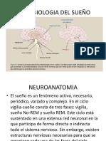 Neurobiologia Del Sueño