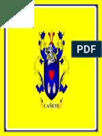 PROVINCIA DE CAÑETE.docx