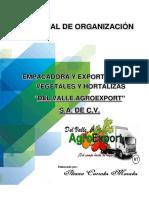 Manual de Organizacion Agroexport Ileana