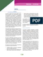 Dcn 2009 Inicial Matematica