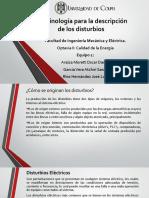 Terminología Para Las Descripción de Los Disturbios...