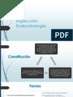 inspección endocrinologia