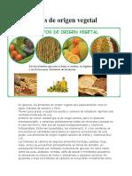 Alimentos-de-origen-vegetal.docx