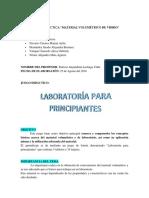 INSTRUCTIVO LABORATORÍA PARA PRINCIPIANTES