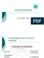 13-CLASE Ictericia Dra Vaca
