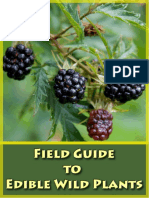 field_guide_to_edible_wild_plants.pdf