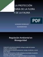 exposicionelectiva1decreto-111012214632-phpapp02.pdf