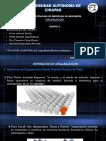 PRESENTACION ORGANIZACION.pptx