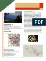 Mariposa_Monarca.pdf