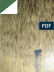 Wood Age.pdf