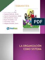 La Organizacion Como Sistema