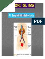 05 Tubulo distale 9.pdf