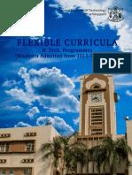 Flexible-Curriculum-2016.pdf