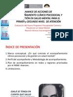 acompaamientoclinicopsinsm-160324183925