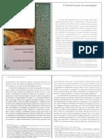 A Interiorização da Metrópole.pdf