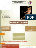 Exponi de Bioelasticicda