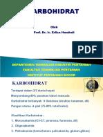 SatPros-Karbohidrat-2010