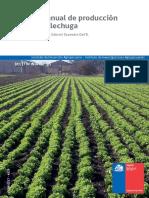 09 Manual Lechuga.pdf