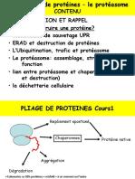 C1 PROTEASOME