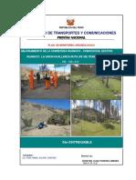Final Entregable 5 PMA Carretera Huanuco Conococha_Tramo II