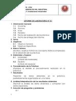 Informe_01