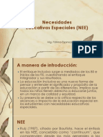 NEE EN PERU