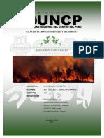 Informe Recubrimiento SINANPE Final