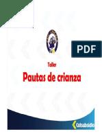 TALLER PAUTAS DE CRIANZA.pdf