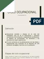 ciclo ocupacional
