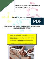 Estructura y Función de Nucleótidos 1