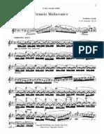 Delorenzo Flute