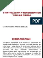 cicatrizacionyregeneraciontisularguiada-120506122039-phpapp02