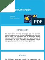 BIOLIXIVIACIÓN.pptx