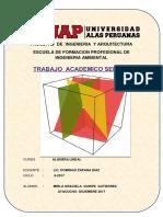 TA 2404-24109-Algebra Lineal.docx
