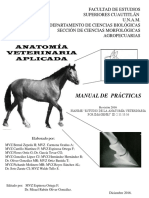Manual Practicas Anatomia Veterinaria Aplicada
