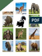 animales salvajes.docx