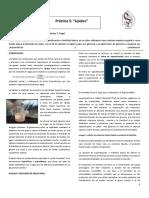 PRÃ_CTICA+5+-+LIPIDOS-ORGÃ_NICA
