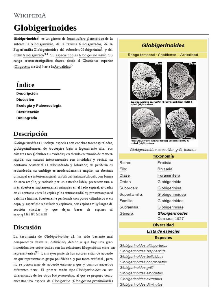 86ff1e03146a globigerinoides