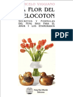 melocoton_demo.pdf