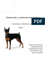 treball_deontologia_amb_annexos.pdf