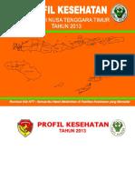 19_prov_ntt_2013.pdf