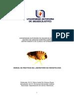 manualdepracticas26-1525.pdf
