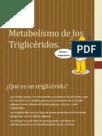 177491630-metabolismo-de-los-trigliceridos.pdf