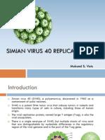 Simian Virus 40 Replication