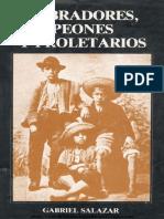 salazarvg0002.pdf